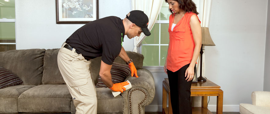 Monterey, CA carpet upholstery cleaning